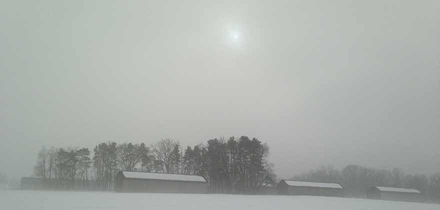 Photograph, Knightly Road, Hadley, Massachusetts, in Winter