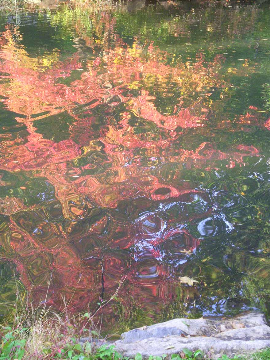 Photograph, Reflections on water