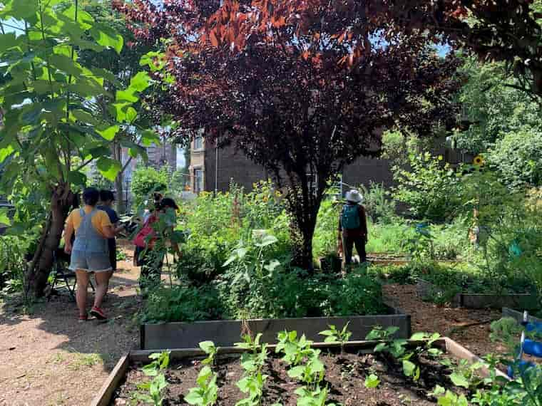 Project-Based Gardening for Different Ages
