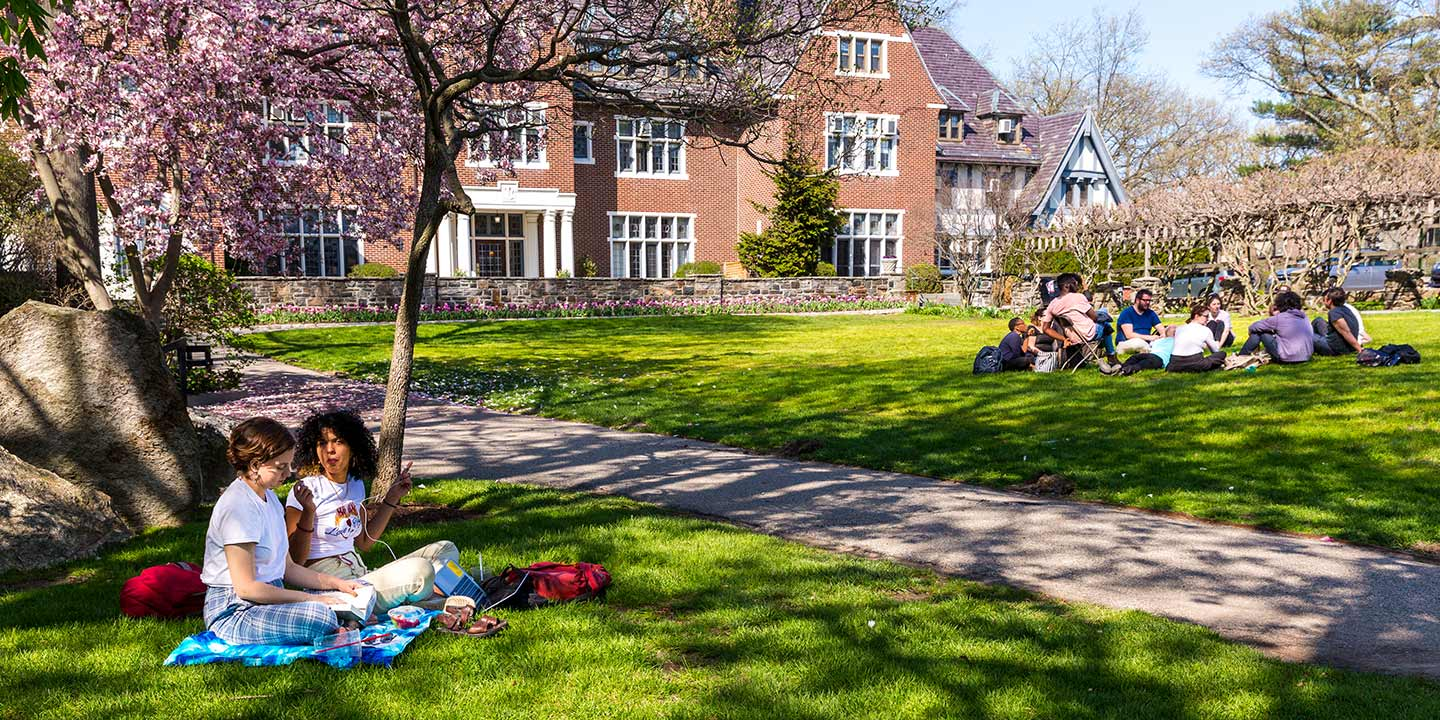 Students sitting in clusters on Westlands lawn