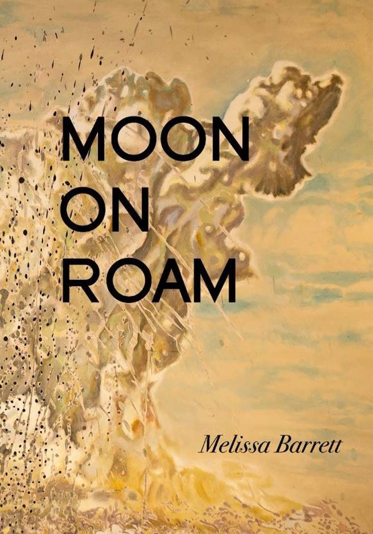 Moon on Roam book cover image