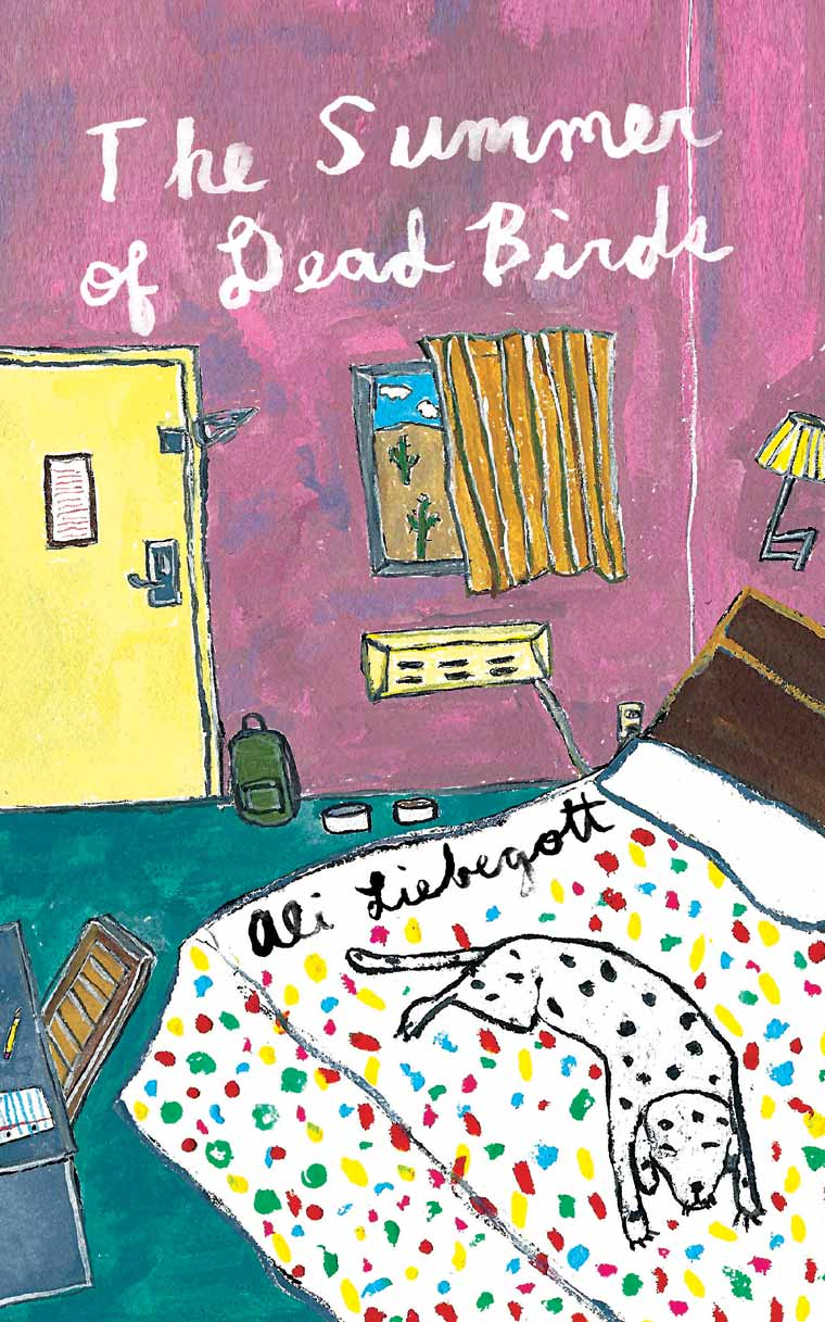 The Summer of Dead Birds book cover image