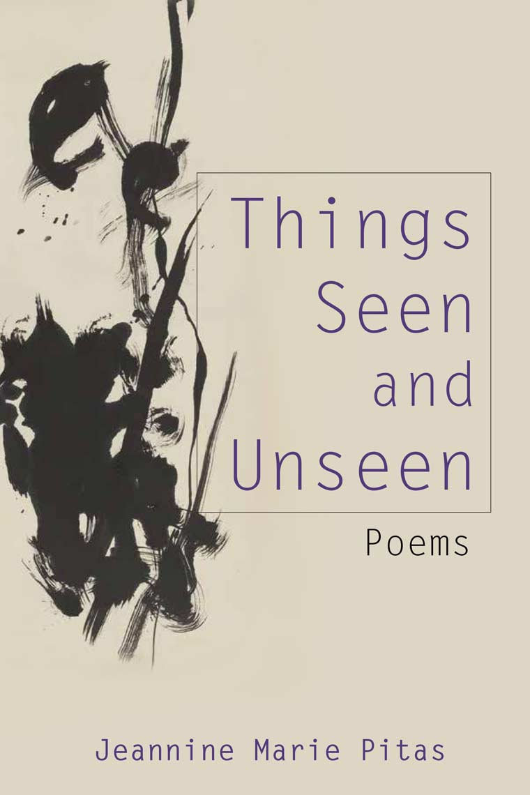 Things Seen and Unseen book cover image