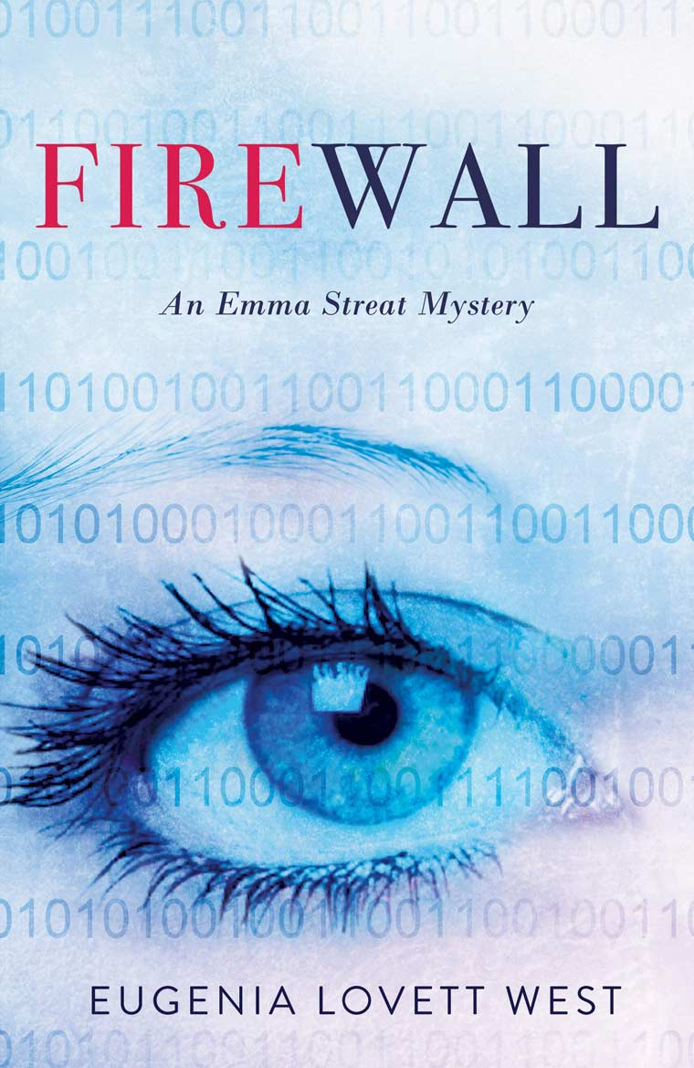 Firewall book cover image