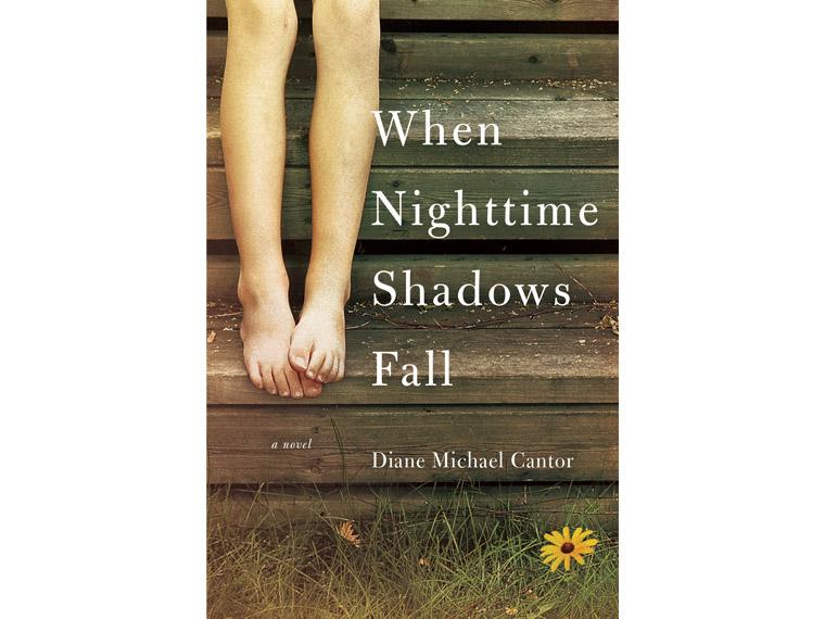 When Nighttime Shadows Fall book cover