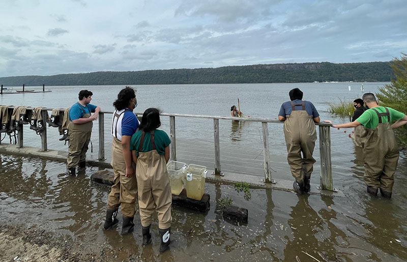 People seining in the Hudson River