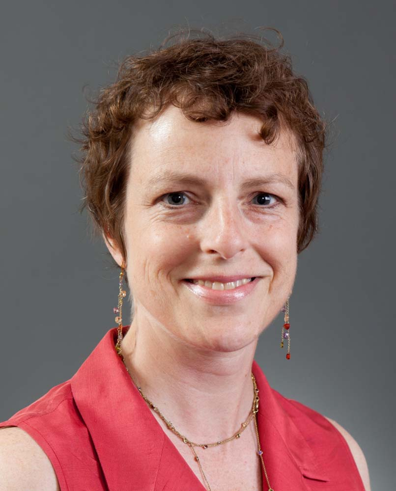 Michele Disco '07, Faculty Member